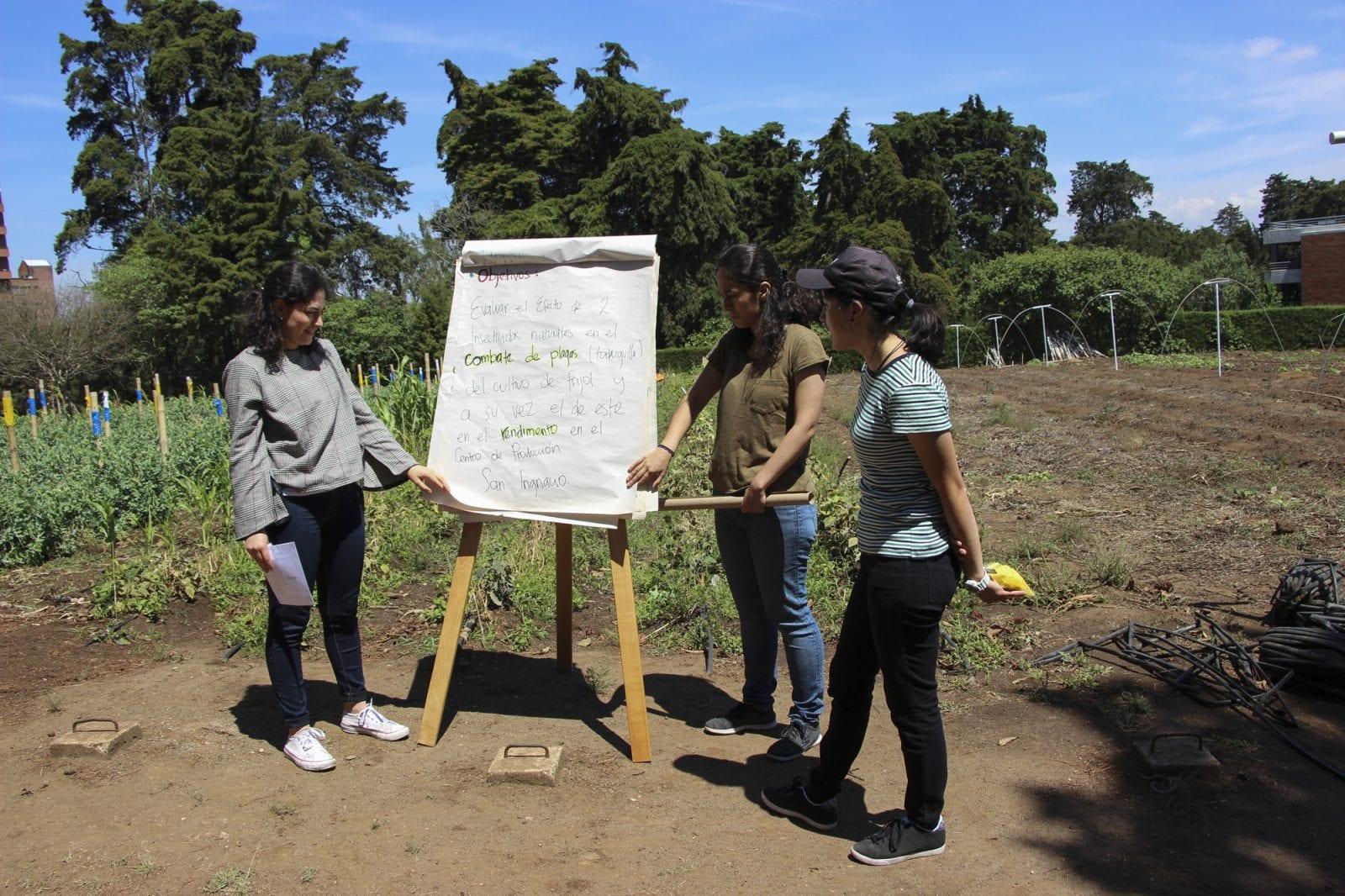 Día de campo en San Ignacio imagen