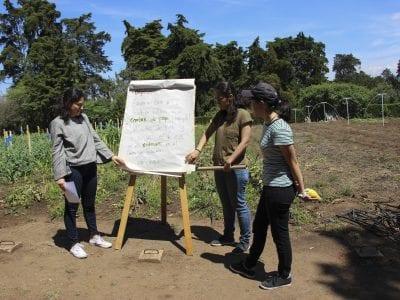 Día de campo en San Ignacio Image