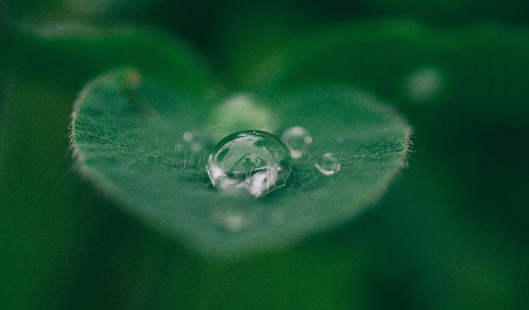 La gestión eficiente del agua, un compromiso de todos imagen