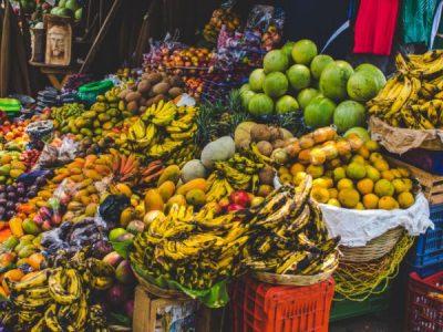 La importancia de la seguridad alimentaria en el oriente del país Image
