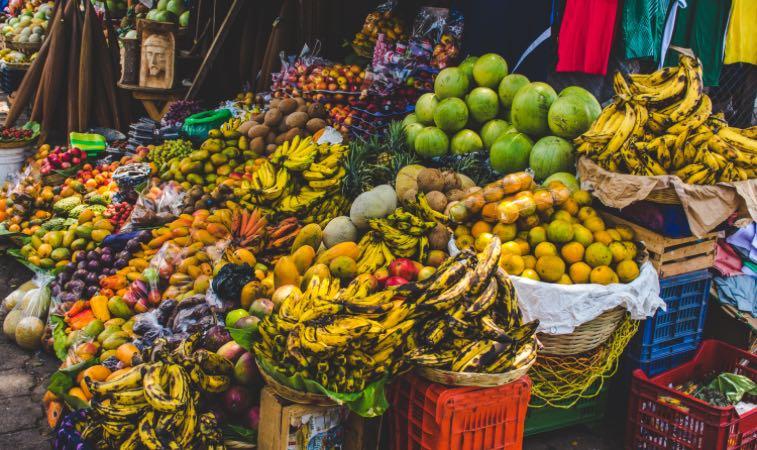 La importancia de la seguridad alimentaria en el oriente del país imagen